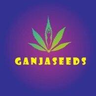 Ganjaseeds